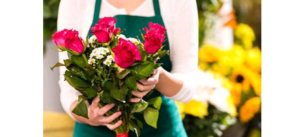 Catleya Diseño Y Flores