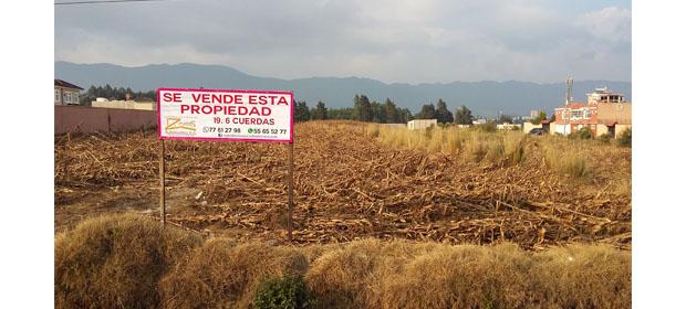 Reyes & Soto Asociados Bienes Raíces S.A.