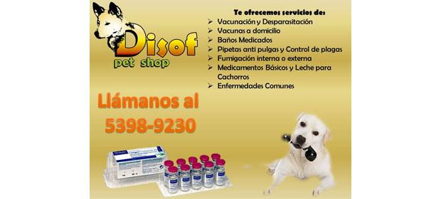 Pet Shop Disof