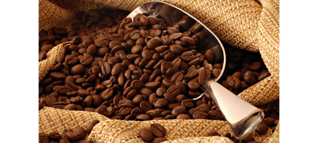 La Vega Coffee