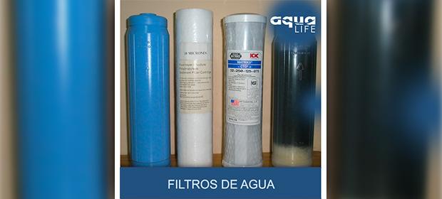 Aqua Life