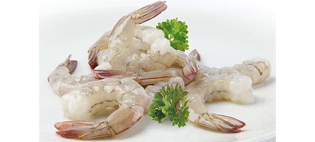 Gambore Seafood Company, S.A. - Imagen 4 - Visitanos!