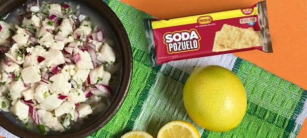Comercial Pozuelo Panamá, S A - Imagen 5 - Visitanos!