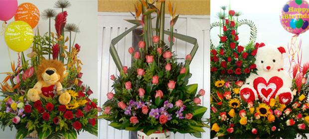 Floristeria Encanto Floral