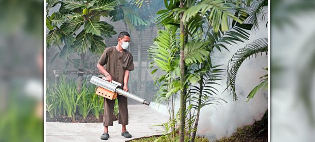 Ambiente Fumisalud